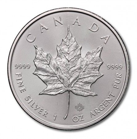 Monster Box of 500 x 1oz Silver Maple Leaf | solely for Freeport storage or Singapore pickup